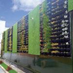 Las envolturas vegetales en entornos urbanos mejoran nuestra salud